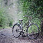 vélo dans la nature